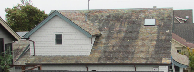 Slate roof cleaning and restoration. Capitola Ca. Before